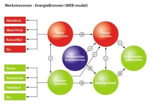 web model